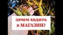 Как ловить Чилимов? Первый опыт ловли креветки на Сахалине. ловлю морскую креветку. Sakhalin