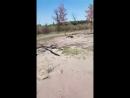 Video baa7a07c9ac18b9e46e609bd72114eca