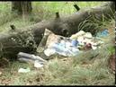 В Ярославле волонтеры убрали стихийную свалку за Волгой