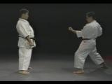 Morio Higaonna. Goju Ryu karate. Bunkai