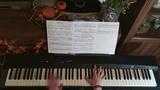 John Williams - One Small Fact The Book Thief ( Solo Piano )