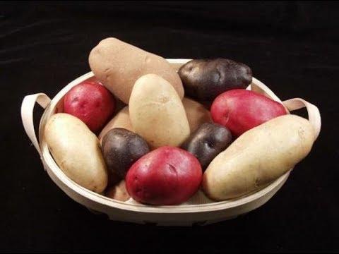 Чертовы яблоки.Так вот оказывается,почему ИНКИ не ели КАРТОШКУ.Тайны Чапман