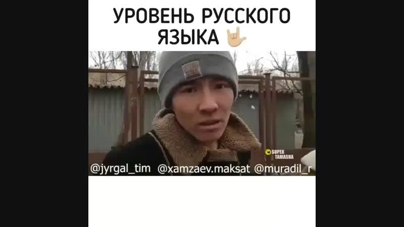 уровень русского языка