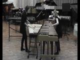 Florian Poser - Capriccio (vibraphone &amp marimba)