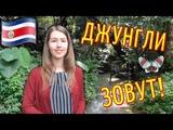 КОСТА РИКА Парк Мира Тропический лес