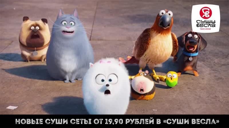 Новые суши сеты от 19,90 рублей