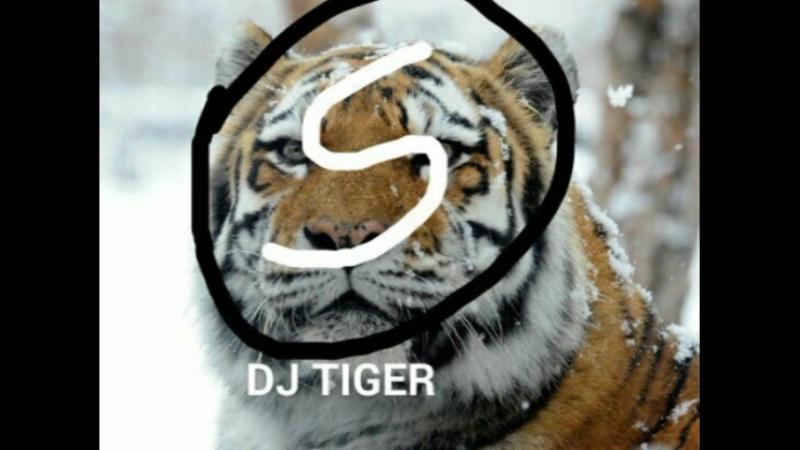 DJ TIGER DJ RIGODON ✖🐯🐯🐯