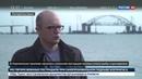 Новости на Россия 24 • Ученые проследят за миграцией рыбы и дельфинов в Керченском проливе