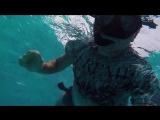 MALDIVES 2018 underwater