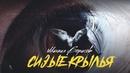 Клип снятый на айфон - Сизые крылья Шансон года Михаил Борисов