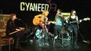 Cyaneed Nr 2 acoustic
