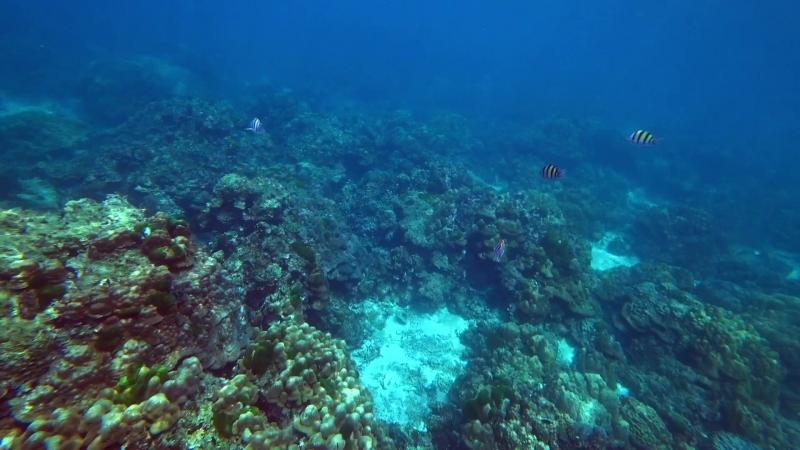 Тайланд :3 Пхукет Остров