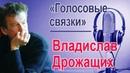 Владислав Дрожащих Голосовые связки