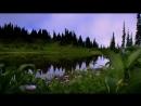 Одинокий пастух _⁄ Einsamer Hirte _⁄ The Lonely Shepherd