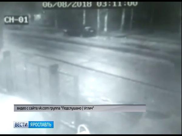 В Угличе по улице гулял медвежонок
