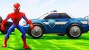 Мультики про Машинки Монстр Трак Полицейская Машина Джип Человек Паук Гонки Мультики для детей