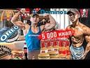 Мой ЧИТ-МИЛ День. 5000 ккал / ПРИСЕД 225 кг и СТАНОВАЯ 230 кг / МегаВлог