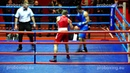 Riga Open 2014 Final 60 kg: Artjom RAMALAVS Latvia VS Dzhamal BADRUTDINOV Russia proboxing.eu