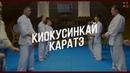 Уроки боевых искусств Киокусинкай