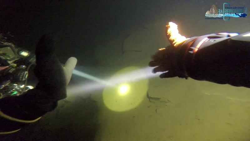 Впервые получено видео со 100-метровой глубины Телецкого озера