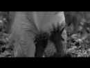 Witchthroat Serpent Scorpent Serpion 2018 Doom Metal Stoner Metal Франция
