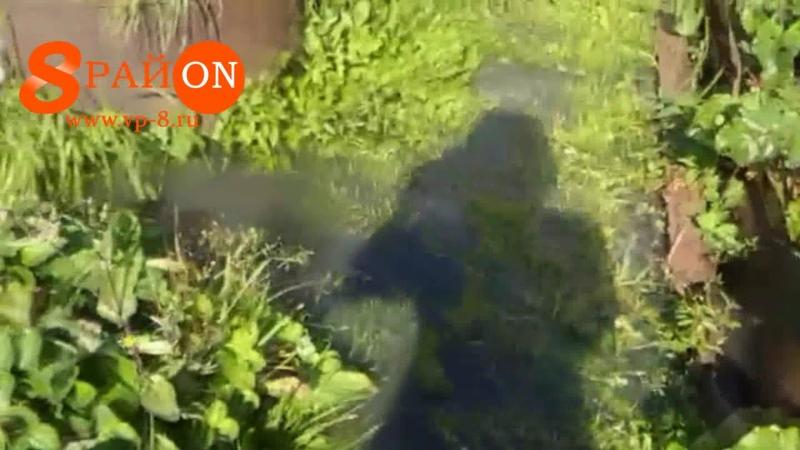 Очистных сооружений в Среднеуральске топят сады