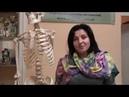 Видеоотзыв Людмилы Лысенко о курсе прикладной анатомии опорно двигательного аппарата 7 9 04 17