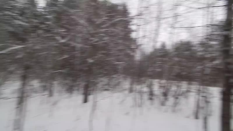 вирусное видео