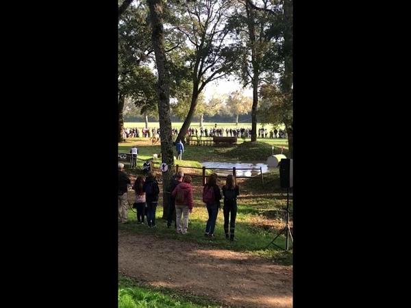 Будённовский жеребец Иприт - чемпионат мира по троеборью