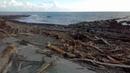 Архипо-осиповка. Декабрь 2018. На прохоровском пляже случился лесоповал.
