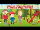 Правила поведения в лесу для детей и взрослых 👶