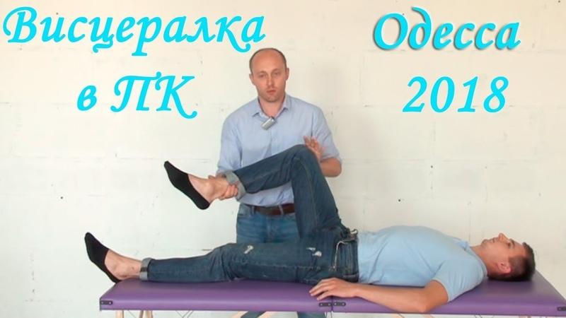 Висцеральная терапия 2 Органы малого таза ГМ Крутов