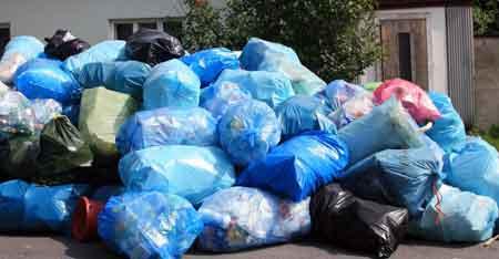 Постельные клопы могут использовать мешки для мусора, чтобы размножаться
