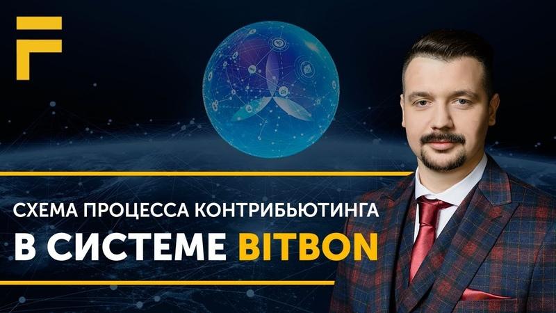 Схема процесса Контрибьютинга в Системе Bitbon. Алексей Заруцкий