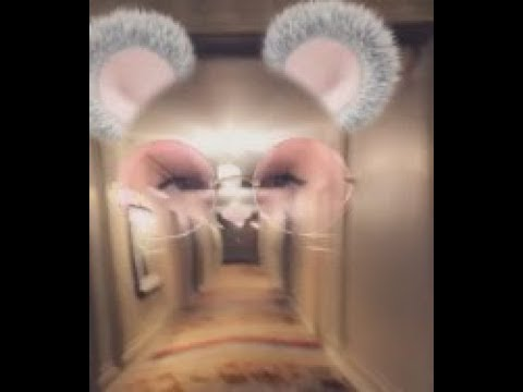 Ghost Captured By Using Snapchat Face Finder At Renaissance Hotel. Cleveland, Ohio