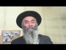 46.1 Тора. Жизнь Авраама Текст на Сайте