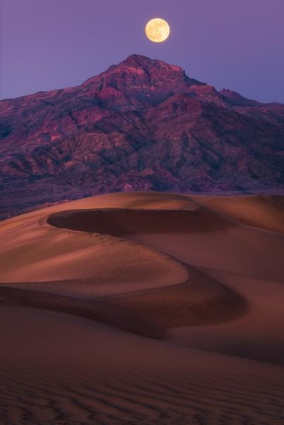 Полная луна поднимается над песчаными дюнами (Долина Смерти, Калифорния)