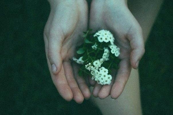 Подумай обо мне, и я буду с тобой, потому что мы с тобой любили друг друга только одно мгновение, но навеки.