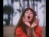 Kate Bush Wuthering Heights. little crazy chicken ))