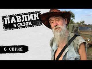 ПАВЛИК 5 СЕЗОН - 8 серия