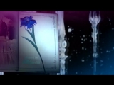 Аниме Final Fantasy XV, Final Fantasy XV Kingsglaive Музыка Septem Voices - Shadow