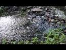 Каменный порожек на ручье