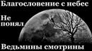 Истории на ночь (3в1): 1.Благословение с небес, 2.Не понял, 3.Ведьмины смотрины