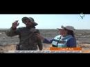 بادية السويداء الجيش العربي السوري يحرر كامل أرض قاع البنات في محيط تلول الصفا