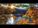 Хорошей осени! Пожелания друзьям Красивая видео открытка