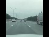 Трюкач на мотоцикле на Минском шоссе
