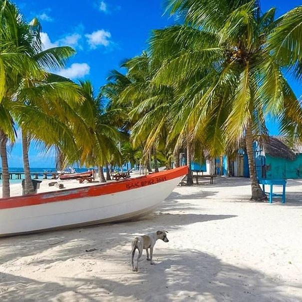 """Тур в Доминикану на 8 ночей в отель 3* с """"все включено"""" за 47700 с человека в ноябре"""