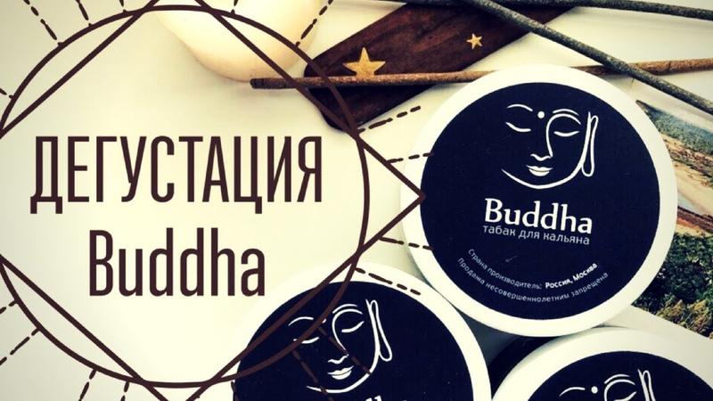 Дегустация и обзор табака Buddha в кальянной Factory Rooftop