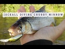 Ловля голавля судака и окуня на воблер Jackall Diving Chubby Minnow