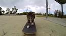 Cat skateboarder